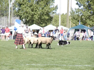2001 Calgary Highland Games 09