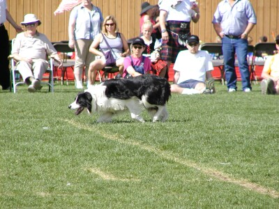 2001 Calgary Highland Games 07